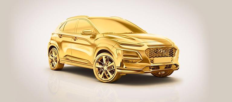 Clients flotte Hyundai